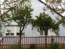 balatonföldvári családi ház eladó
