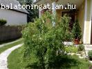 Balatoni szép családi ház ár alatt ELADÓ